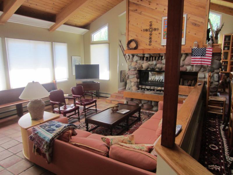 Living Area - 4 bedroom home in Snowmass Village, Colorado - Snowmass Village - rentals