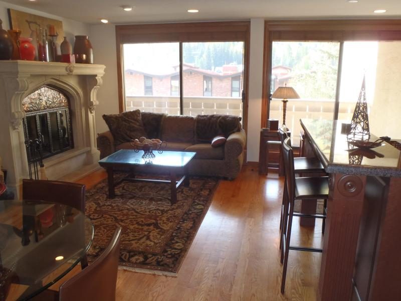 Luxury 2 bedroom condo - Image 1 - Vail - rentals
