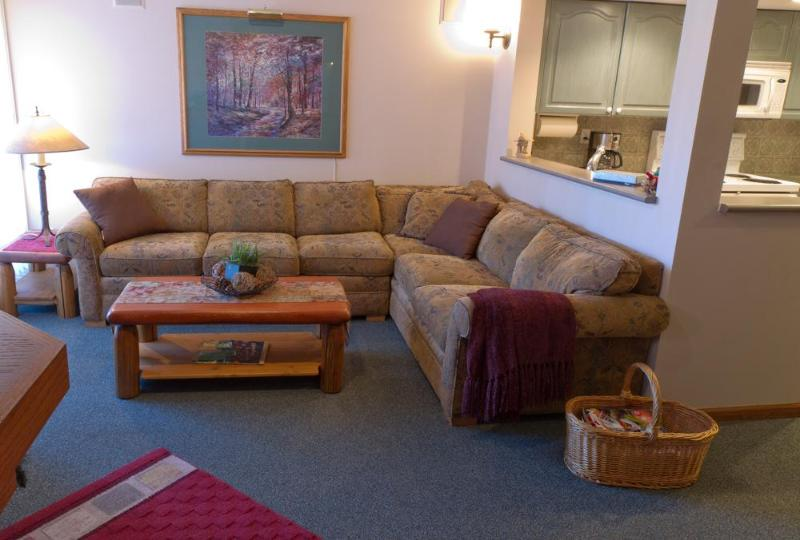 Features large sectional sofa, flat screen TV, surround sound stereo, deck with BBQ - Sunpath 12, 2 bdrm pet-friendly, private hot tub - Whistler - rentals