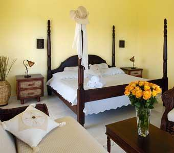 junior suite - Junior Suite, Lifestyles resort, Other sizes avail - Puerto Plata - rentals