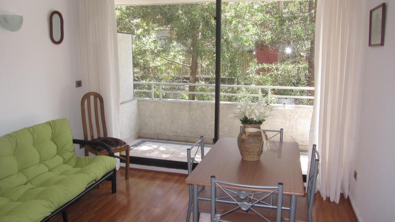 living room - Nice Neighbourhood appartment (flat). - Puyuhuapi - rentals