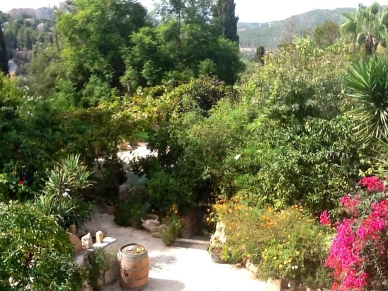 Garden - Peaceful hillside Suites - Jerusalem - rentals