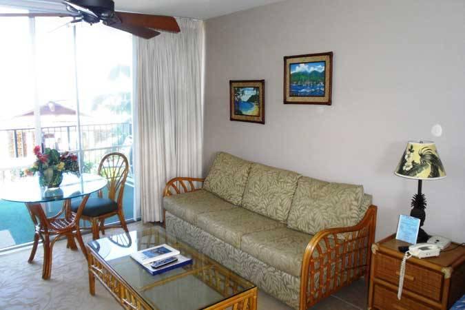 Noelani #114 - Image 1 - Kahana - rentals
