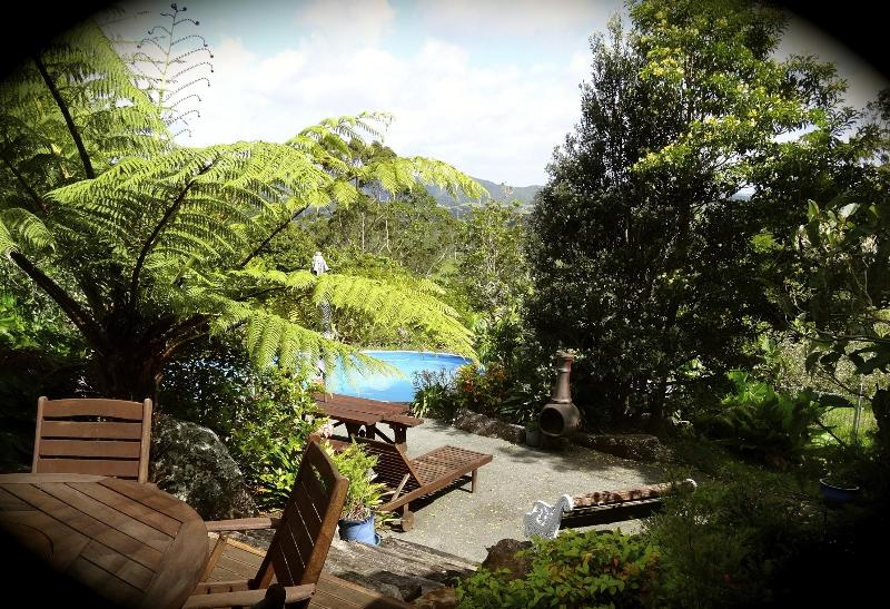 View from the King bedroom - Secluded Rural Retreat + Beaches + Critters + Fun! - Waipu - rentals