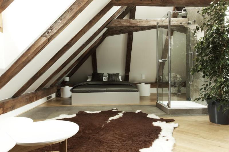 Royal Palace - Luxury Attic One Bedroom Apartment - Royal Palace - Luxury Attic One Bedroom Apartment - Prague - rentals