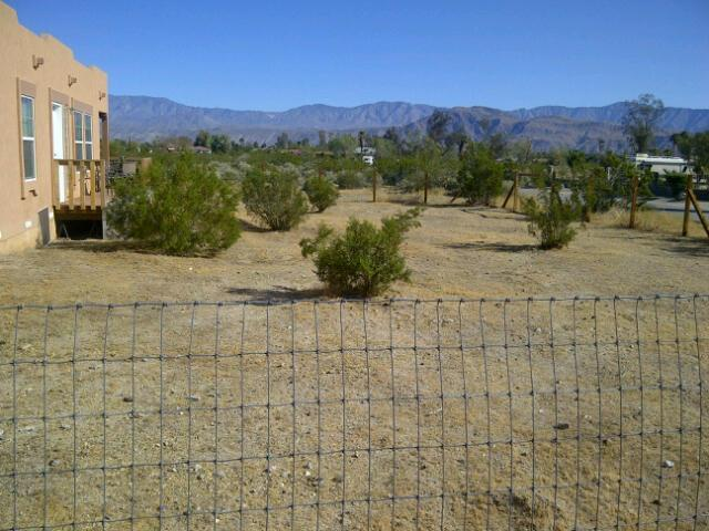 GATED FOR YOU PRIVACY AND SAFETY - Beautiful Majestic 3 Bedroom Desert Home-  ULTRA P - Borrego Springs - rentals