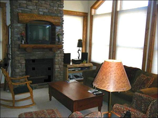 Gas Fireplace and Sleeper Sofa in the Living Room - Peachtree & West Wall Lift Access - Beautiful Decor Throughout (1238) - Crested Butte - rentals