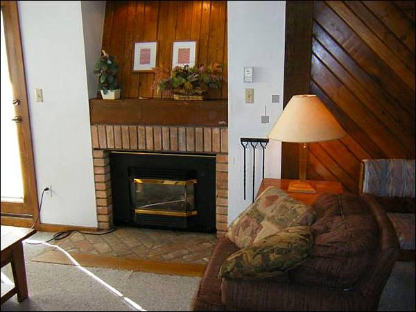 Sleeper Sofa and Gas Fireplace in the Living Room - Centrally Located for Summer & Winter Trips - Value-Priced Condo (1242) - Crested Butte - rentals
