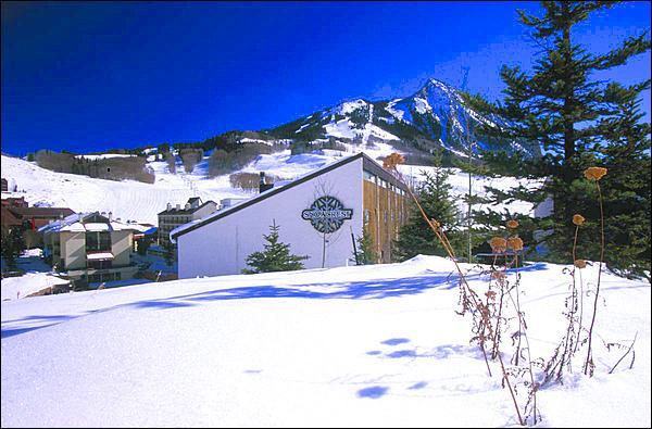 Fantastic Mountain Location - Wonderful Snowcrest Condo - Gorgeous Mountain Views (1322) - Crested Butte - rentals