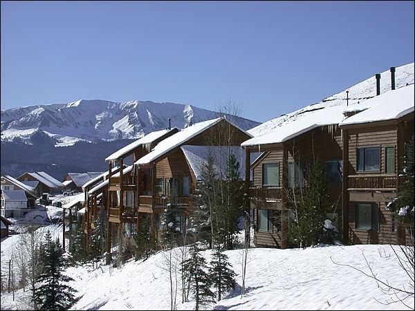 Great, Central Location - Beautiful Mountain Views - Close to the Shuttle Stop (1356) - Crested Butte - rentals