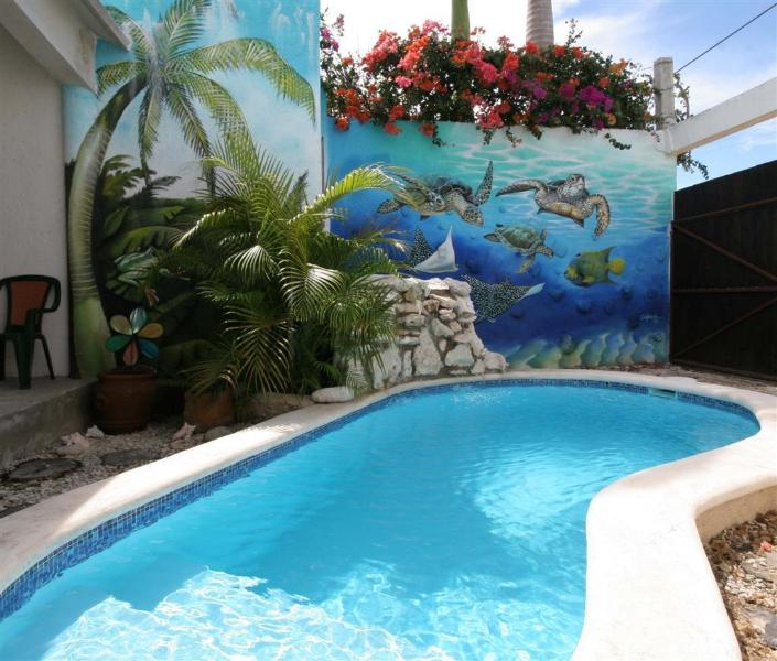 Very Private Pool - Island Love Shack...Casa Amor! - Cozumel - rentals