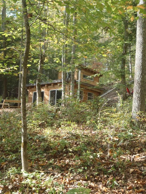 Peregrine Cabin - Peregrine Cabin - Stanton - rentals