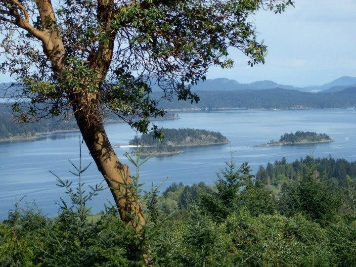 Stunning Ocean views from all rooms - Allison Harbourview House - Stunning Ocean views - Salt Spring Island - rentals