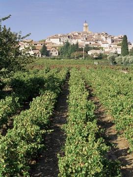 Sablet - Le Petit Jardin, Spacious 2 Bedroom Rental in Sablet, Provence - Sablet - rentals