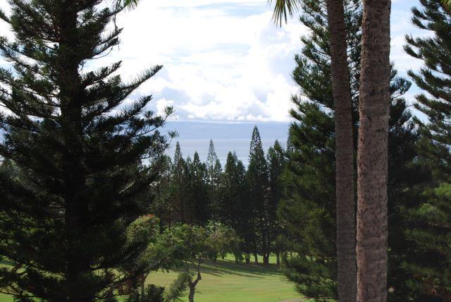 Kapalua Golf Villas  G14V3 - Image 1 - Kapalua - rentals