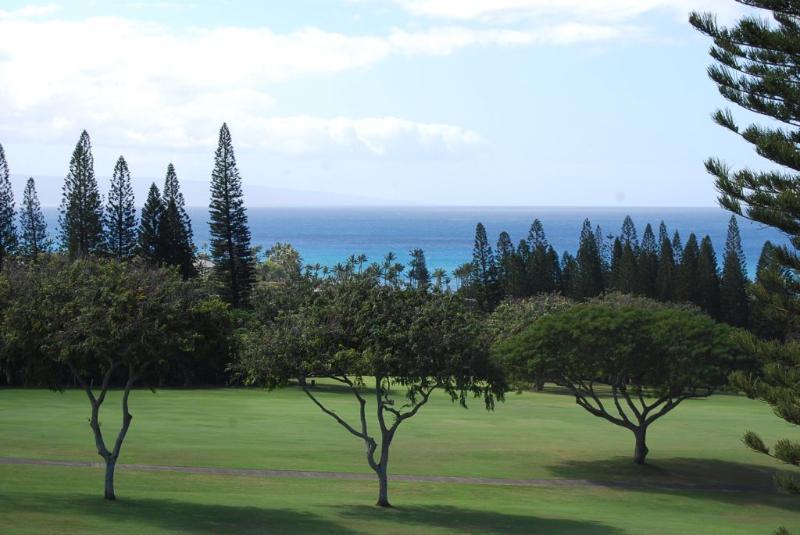 Kapalua Golf Villas  G18V4 - Image 1 - Kapalua - rentals