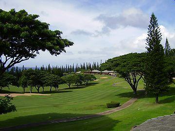 Kapalua Golf Villas  G15T1 - Image 1 - Kapalua - rentals