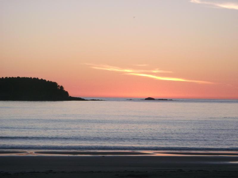 Sunset view from deck - The Sea Lion Oceanfront Chesterman Beach Tofino - Tofino - rentals