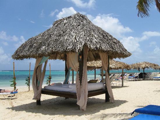 PARADISE PJR -  87578 - ALL INCLUSIVE | DIAMOND | OCEAN VIEW CONCIERGE - OCHO RIOS - Image 1 - Ocho Rios - rentals