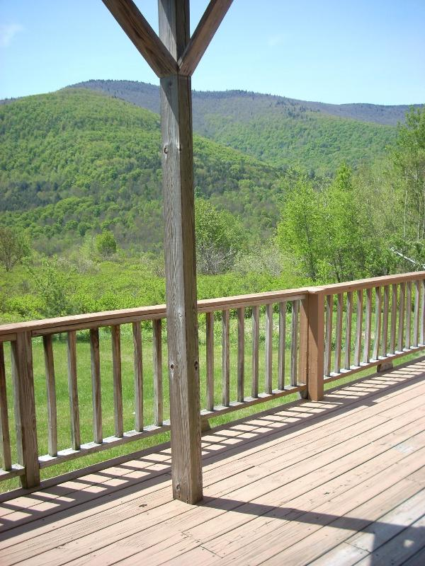 Beautiful Mountain Views - Hunter Mt~REDUCED NOW~Best Deals~5 min to Slopes! - Hunter - rentals