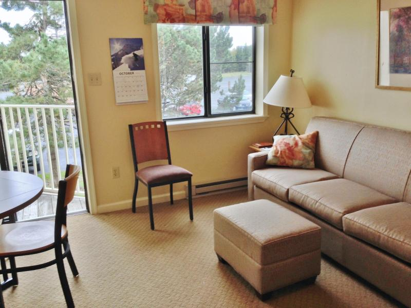 New Sleeper Sofa with upgraded mattress - Mtn Lodge 229 Ski In/Out, Village Central - Snowshoe - rentals