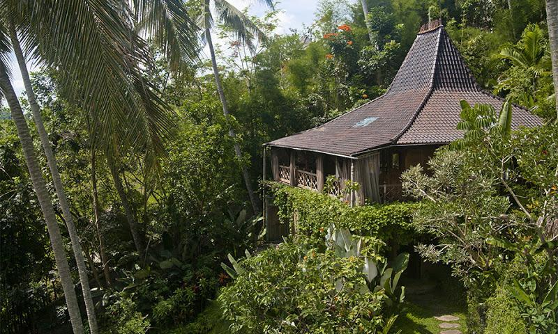 Pelangi estate. View of the Java guesthouse surrounded by tropical greenery - Riverside authentic traditional Java House - Ubud - rentals