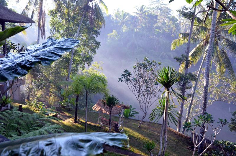 garden - Fabulous design,magnificent view villa,Ubud,4BR - Ubud - rentals