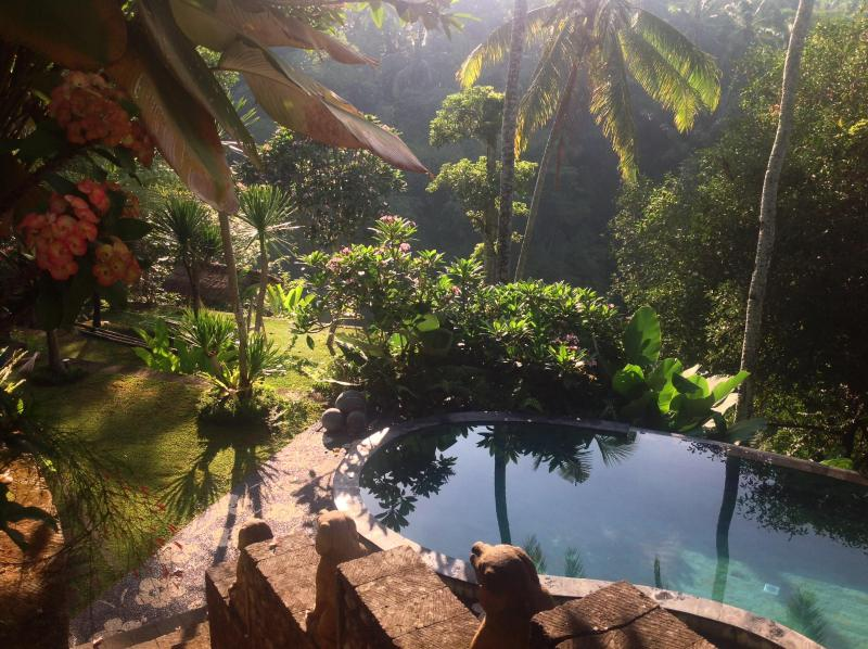swimming pool level - Sublime, tropical forest view villa,Ubud,4BR - Ubud - rentals