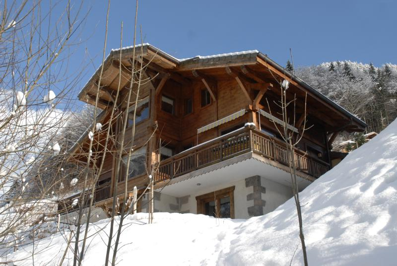 WINTER - Charming Chalet Apartment French Alps Ski Resort - Bonnevaux - rentals