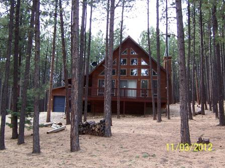 Frazelle Home - Image 1 - Angel Fire - rentals