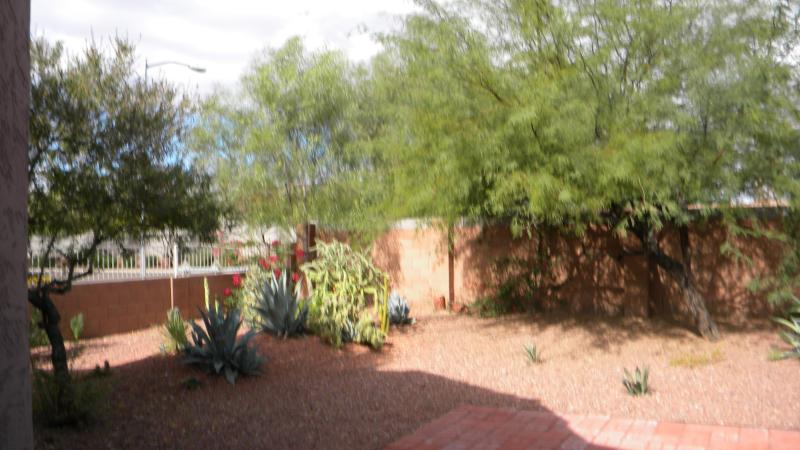 Back yard - CHARMING HOUSE IN PRIVATE CUL DE SAC - Phoenix - rentals