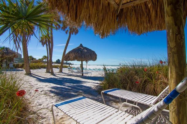 Relax On Our Beach - Sea Shell Condos Directly on Siesta Key Beach - Siesta Key - rentals