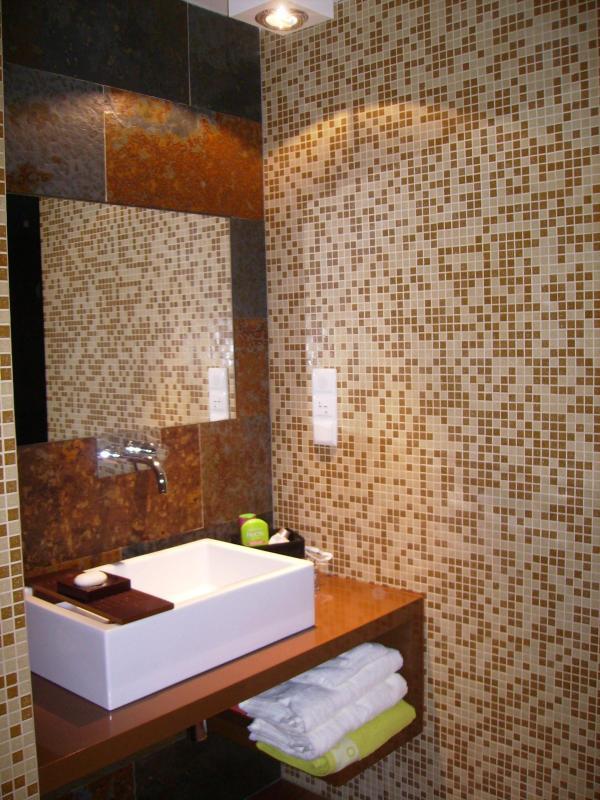 Private bathroom - Modern vacation apartment in Santarém - Santarem - rentals