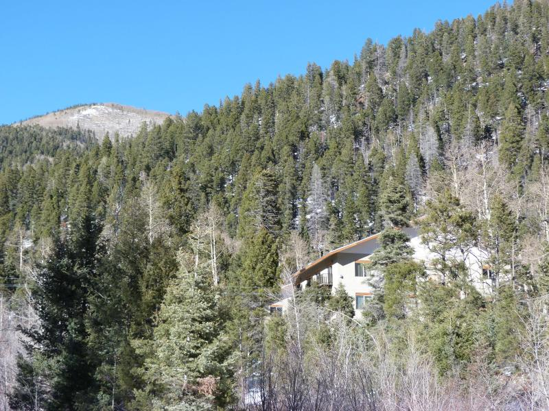 Nestled on sunny hillside - Taos Ski Valley Condo - Taos Ski Valley - rentals