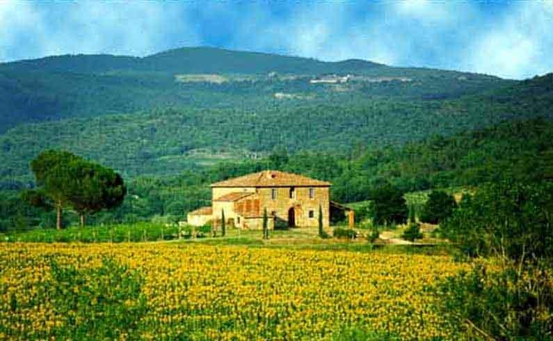 Tuscany Estate - Villa Grand Duc Italian Villa near the Chianti, Tuscany - Image 1 - Bucine - rentals