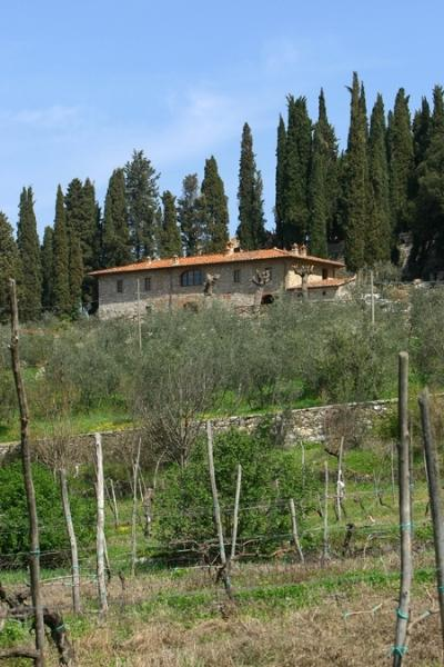 Valdarno 5 renting apartment villa tuscany italy - Image 1 - Pergine Valdarno - rentals