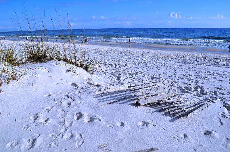 """SpyGlass Unit 104-A"" Uncrowded almost private beach!! - Image 1 - Gulf Shores - rentals"