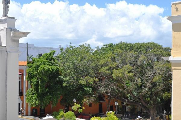 3BR/2BA - Sunny Balcony Rental next to El Convento - Image 1 - San Juan - rentals