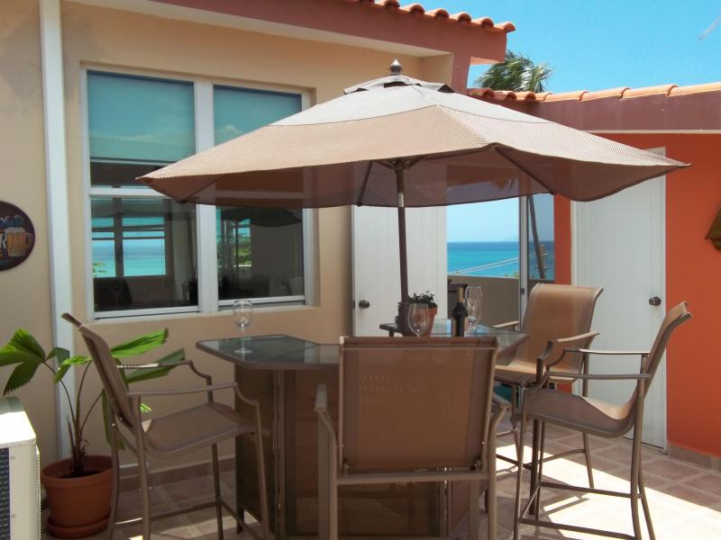 PENTHOUSE AREA - Sweet Front Beach Apartment - Rincon - rentals