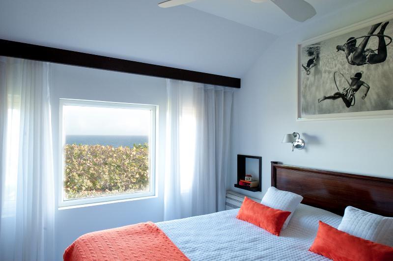 Domingue (CEO) - Image 1 - Pointe Milou - rentals