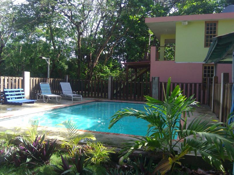 Del Mar Eco-Lodging Apartments:  Manatee - Image 1 - Luquillo - rentals