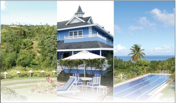 Villa, pool & gardens - Luxury Caribbean villa with magnificent pool - Mount Irvine - rentals