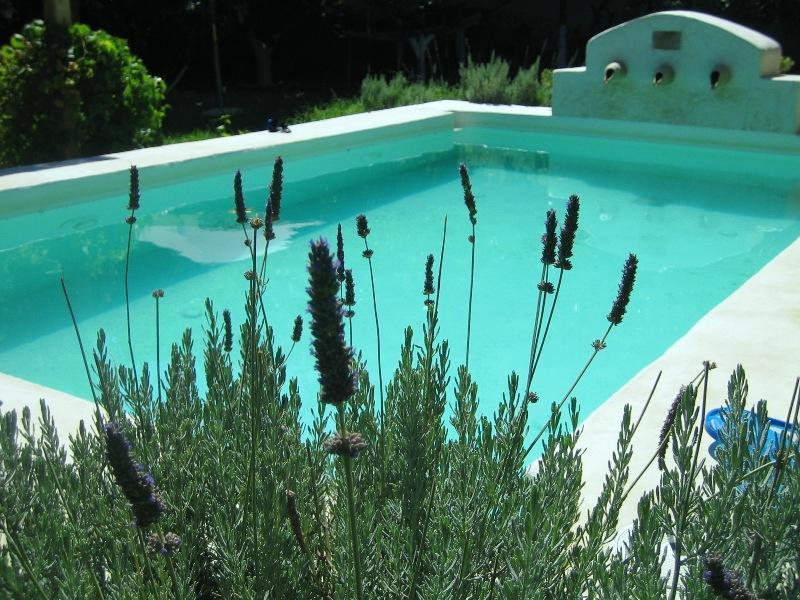 Dream House. Traditional villa w. Chloor-free pool - Image 1 - Koskinou - rentals