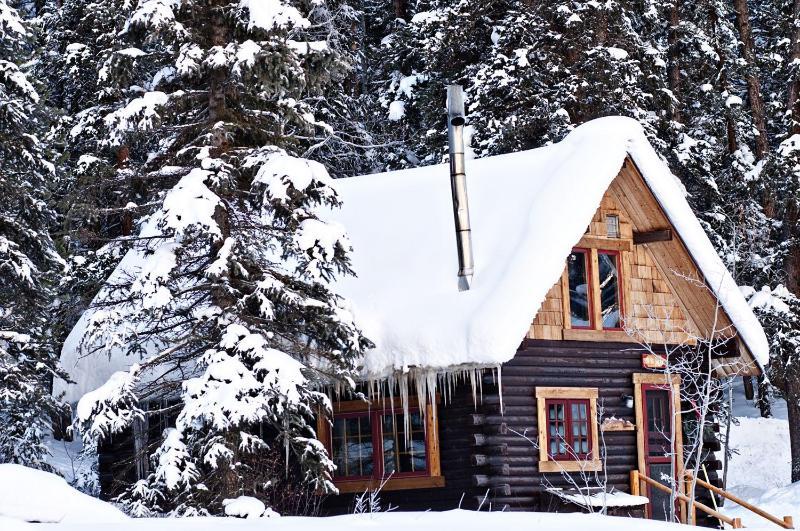 Ohbejoyful Cabin in winter - Cabin #7 Ohbejoyful near Crested Butte/inside NF - Crested Butte - rentals