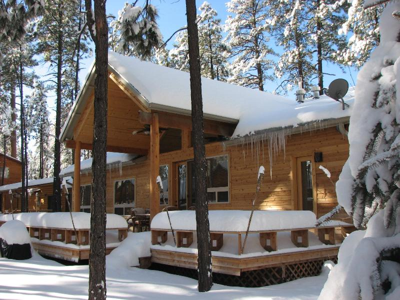 BACK DECK - LUXURY KNOTTY PINE CABIN IN PINETOP LAKES C.C. - Pinetop - rentals