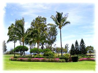Your Daily View from our lanai - Hawaii Golf & Sea Condo Waikoloa - Waikoloa - rentals