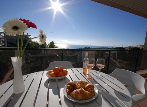 Emma- 1bed with sea view and pool. SUMMER DEALS - Image 1 - Nice - rentals