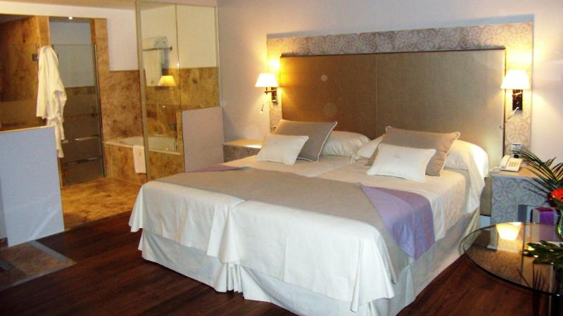 double luxury room - DOUBLE SUPERIOR in DESIGN BODEGA DE NEVADA - Villamena - rentals