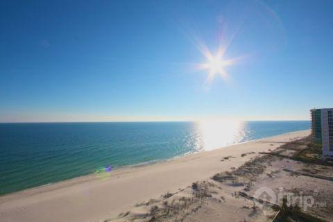 Phoenix X 1204 - Image 1 - Orange Beach - rentals