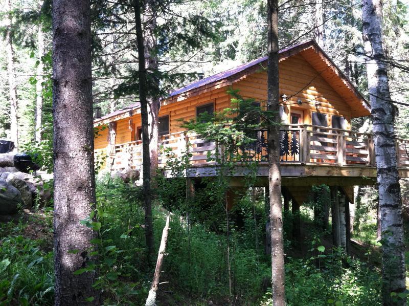 Cabin Eleanor - Forest Cabin - Shevlin - rentals